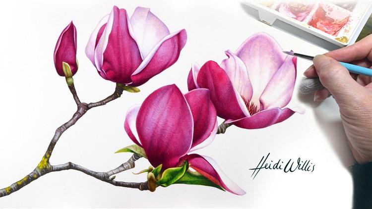 Paint Realistic Watercolor and Botanicals – STUDIO BASICS