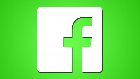 Facebook Ads & Facebook Marketing MASTERY 2021